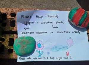 """Two green and red painted rocks holding down a piece of paper which says """"please help yourself. Pepper and cucumber plants. Donations welcome for Paul's Place Charity."""""""
